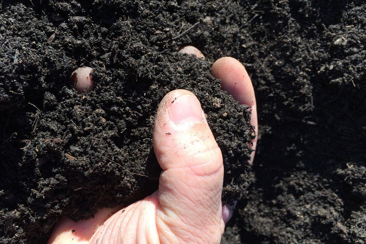 Compost 7